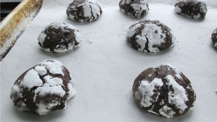 Exceedingly Chocolaty Crinkles cookie recipe by Baked bakery in Brooklyn