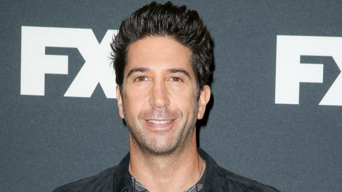 david schwimmer young