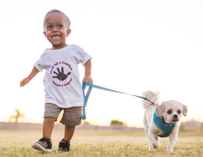 New dog helps 5-year-old boy with dwarfism stand tall to bullies ...