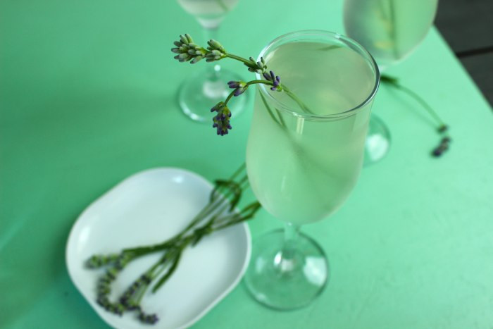 Lavender vodka spritzer cocktail
