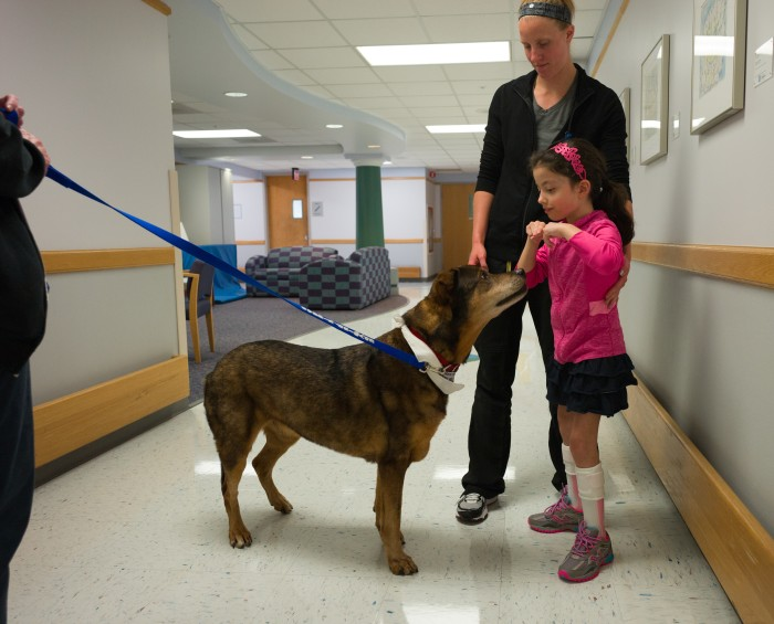 Dogs With Special Needs Help Kids Heal In Physical Therapy