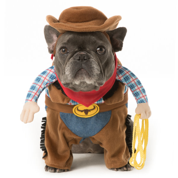 Dog Costumes For  Year Old A Human