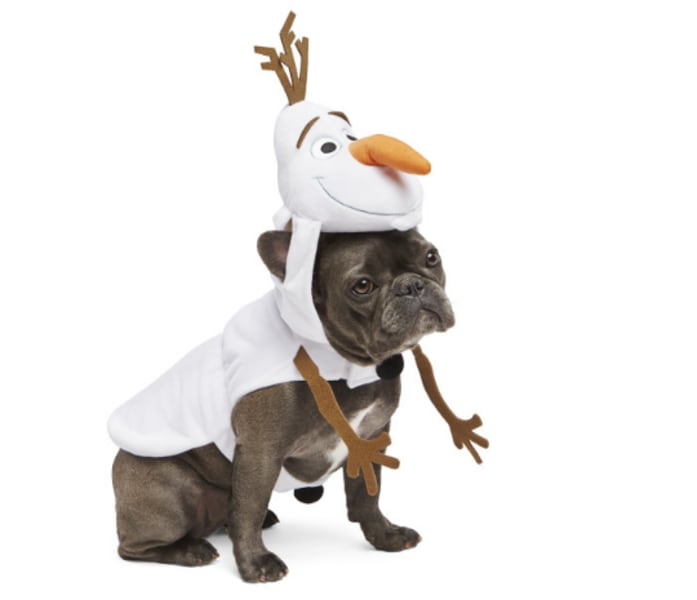 Halloween Costume For 9 Month Old