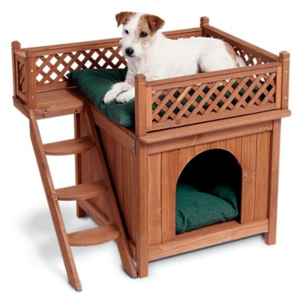 Pineapple Dog Bed Large