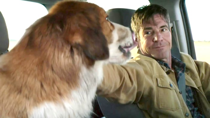 A Dog S Purpose Movie Script