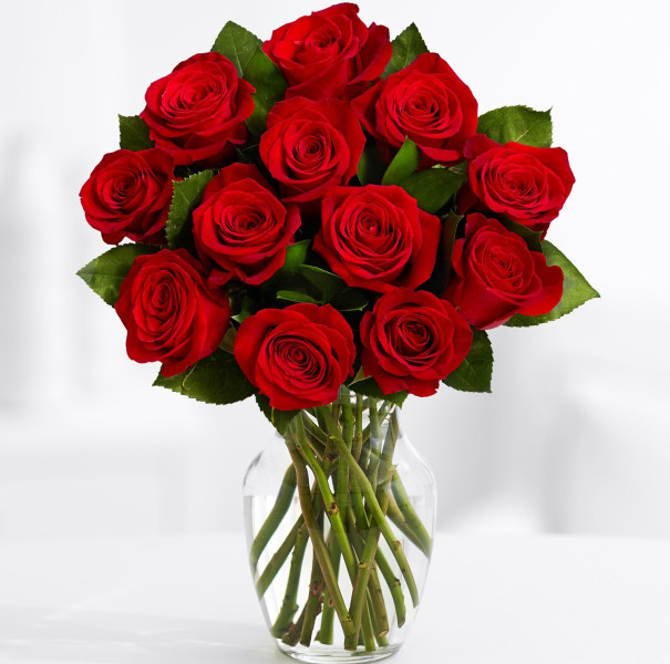Jill martin shares the best home and style deals for under for 12 dozen roses at your door