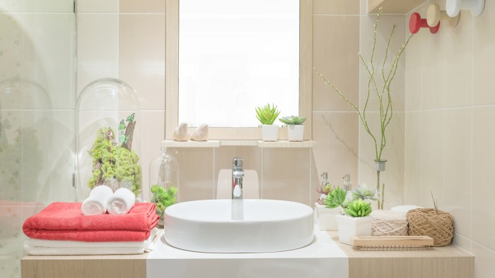 plants in bathroom. Getty Images stock 3 benefits of bathroom and shower plants  TODAY com
