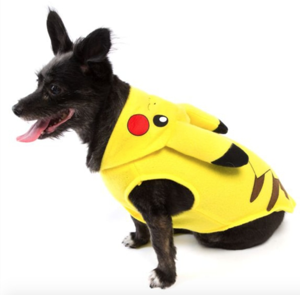 11 adorable matching Halloween costumes for kids and pets - TODAY.com
