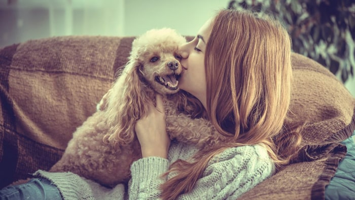 Shutterstock       Dogs may provide more than companionship. They may provide serious health benefits too