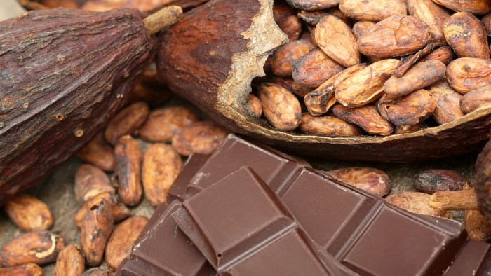 The world is going to run out of chocolate
