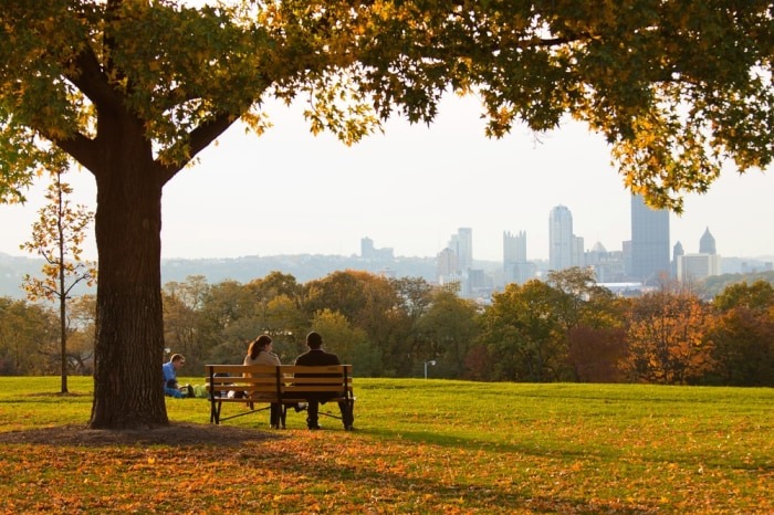 Overlook Drive in Schenley Park, Pittsburgh