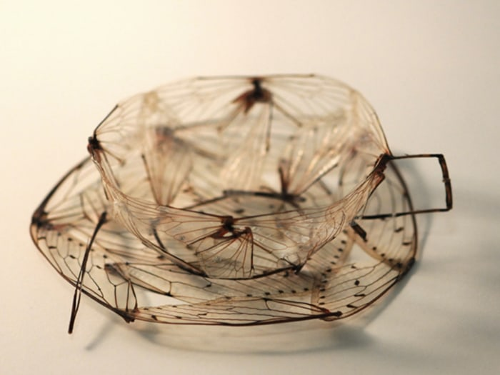 One artist made a teacup out of pieces of a cicada.