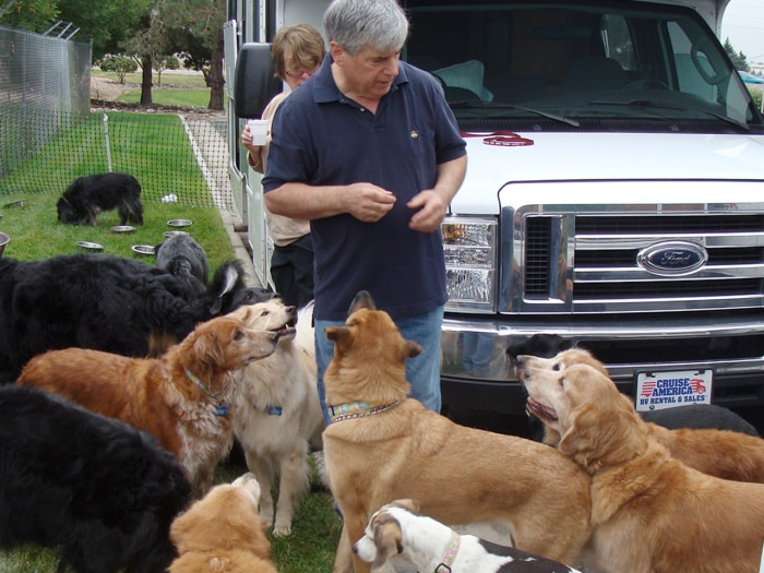 Image: David Rosenfelt with a bunch of dogs