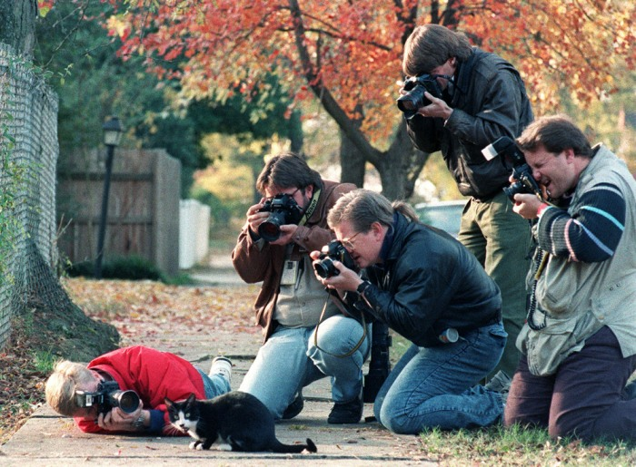 Socks the cat was a celebrity during Bill Clinton's time in the White House.