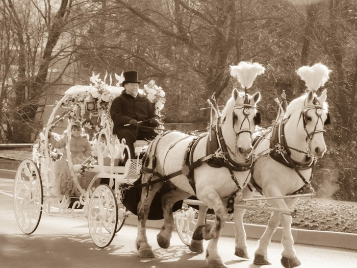 Image: Horse and carriage ride for ill little girl