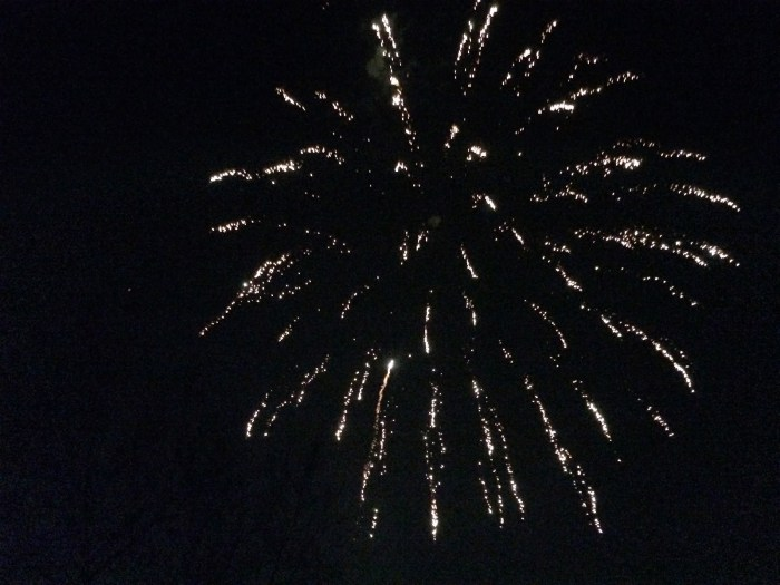 The fireworks display the town put on for Sam.