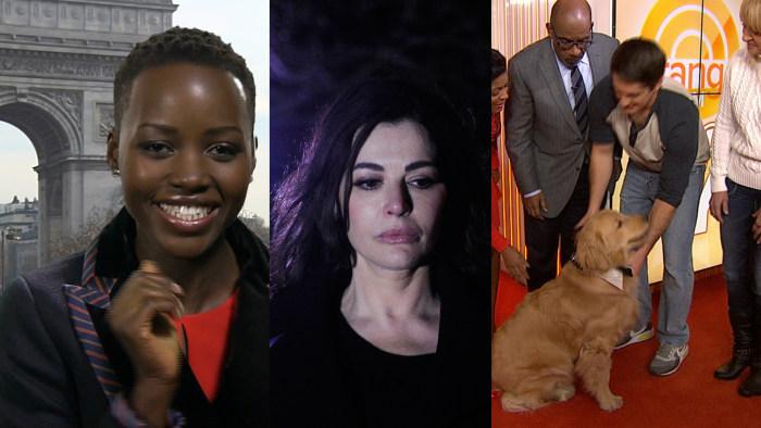 Images: Lupita Nyong'o; Nigella Lawson; Ray Charles the puppy