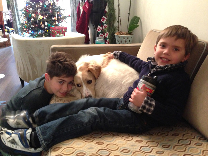 Natalie Morales' sons Josh (left) and Luke, with loyal dog Zara, are counting down the days till Christmas.