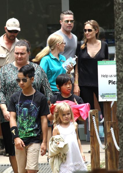 Image: Brad Pitt and Angelina Jolie family