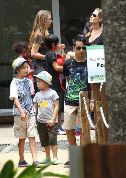 Image: Angelina Jolie and kids