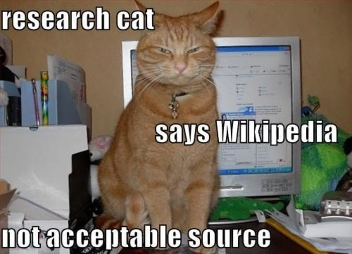 Do you use Wikipedia for your research? Why and why not?