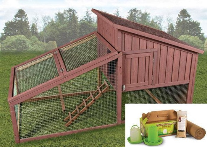 Hen House and Chick Starter Kit