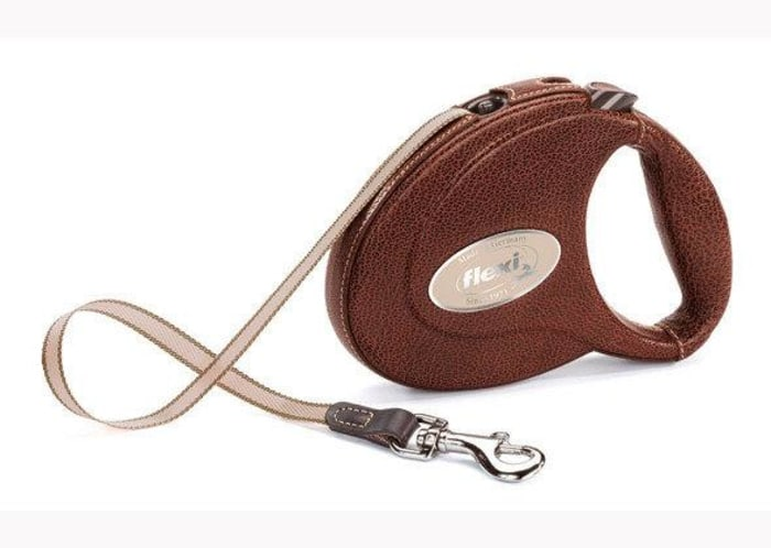 Flexi Leash