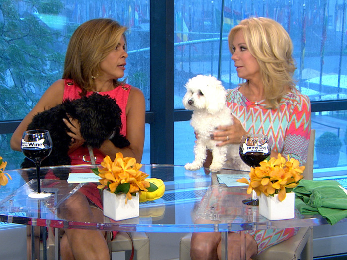 Kathie Lee and Hoda showed off their dogs last week.