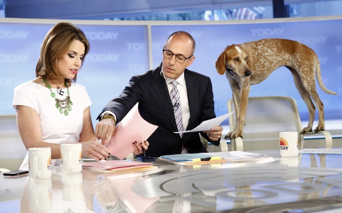 Maddie gets a peek at the morning's news with Matt and Savannah.
