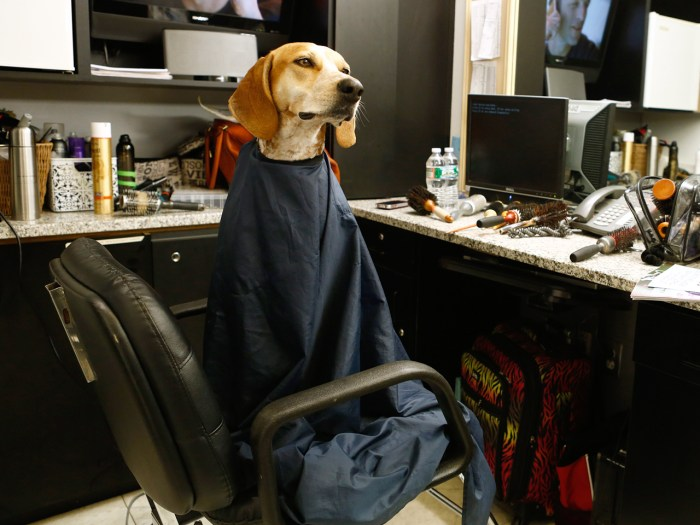 Maddie gets ready for her closeup on TODAY with a trip to the makeup room.