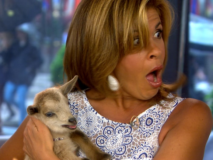 Hoda and the goat.