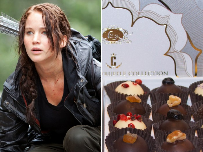 Vosges line of Hunger Games inspired chocolates