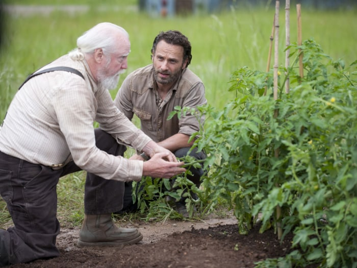 "Image: Hershel and Rick on ""The Walking Dead"""