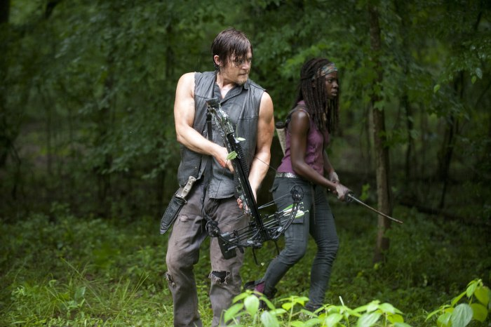 "Image: Daryl, Michonne on ""Walking Dead"""