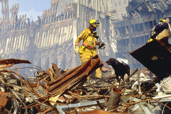 """Image: """"Hero Dogs of 9/11""""; Dog and handler on rubble pile at Ground Zero."""