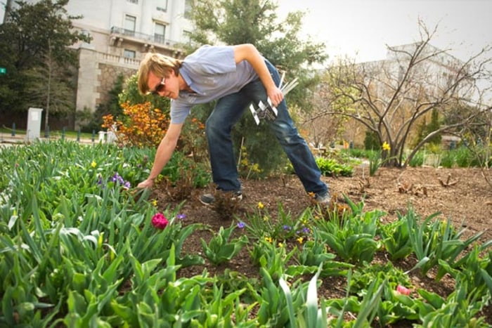 The outside of a home can determine if a would-be buyer ever goes inside. Sprucing up the grounds can help.