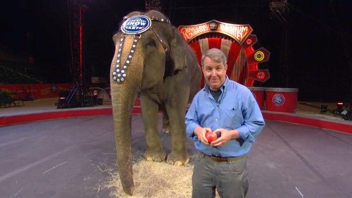 Alt image: Kerry Sanders with Carol the elephant.