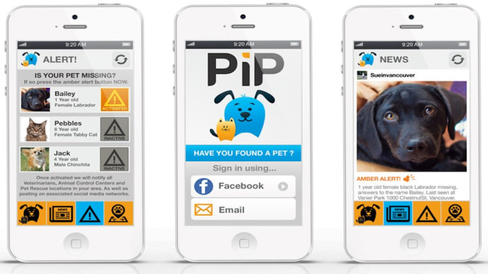 PiP app uses facial recognition technology to help owners find lost pets.