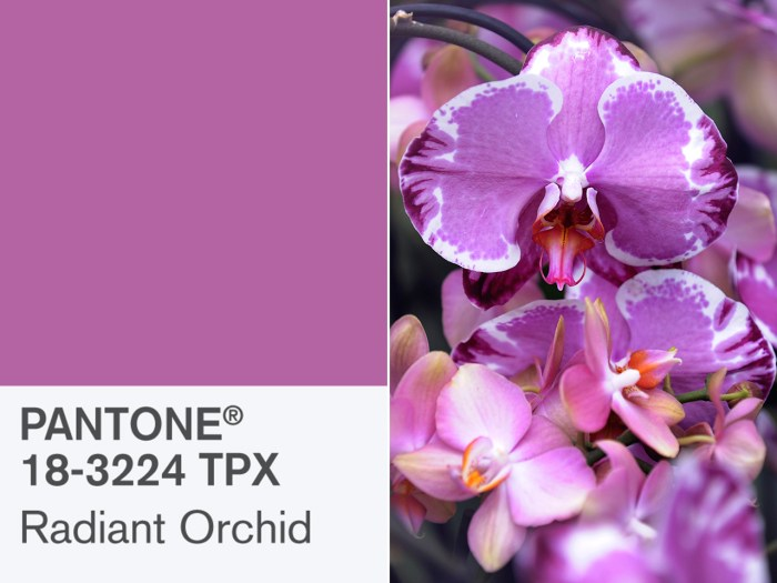 Stock up: Pantone selected Radiant Orchid as the 2014 Color of the Year.