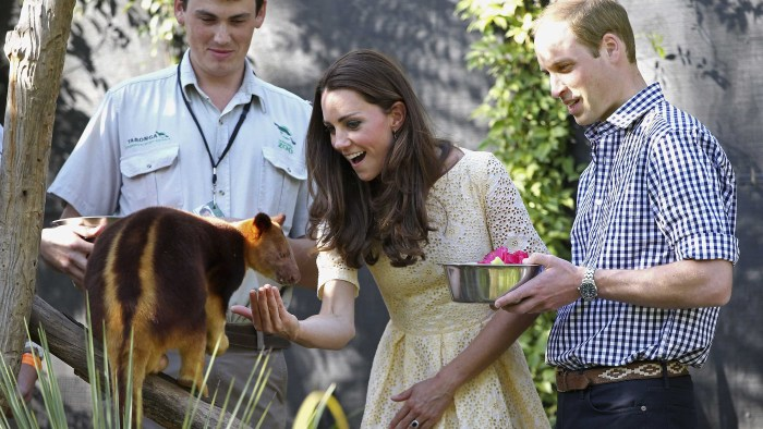 Duchess Kate and Prince William feed a tree kangaroo at Taronga Zoo in Sydney on April 20, 2014.