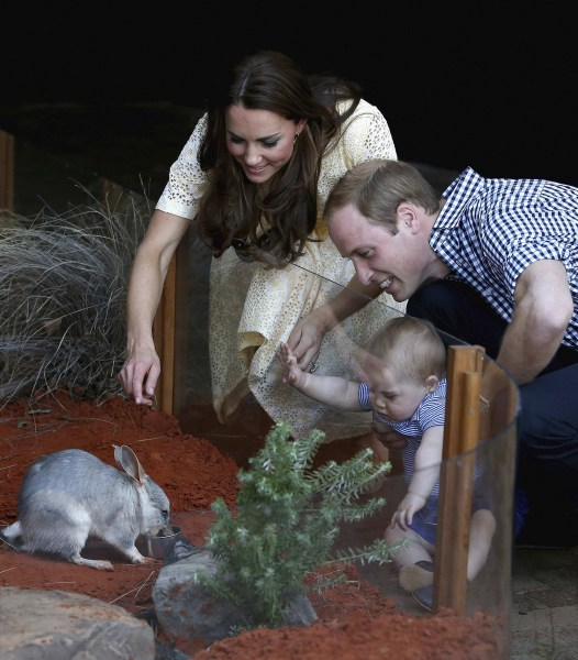 Prince William, Duchess Kate, Prince George