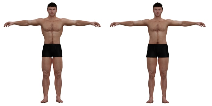 3-D illustration of ideal male body and average male body