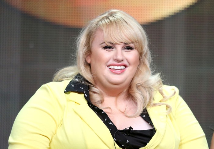"BEVERLY HILLS, CA - AUGUST 04:  Writer/actress Rebel Wilson speaks onstage during the ""Super Fun Night"" panel discussion at the Disney/ABC Television ..."