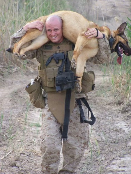 Handlers of retired Marine hero, bomb-sniffing dog give thanks for ...