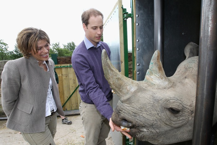 LYMPNE, ENGLAND - JUNE 06:  Prince William, Duke of Cambridge poses with 5 year old black rhino called Zawadi and BBC's Kate Silverton as he visits Po...