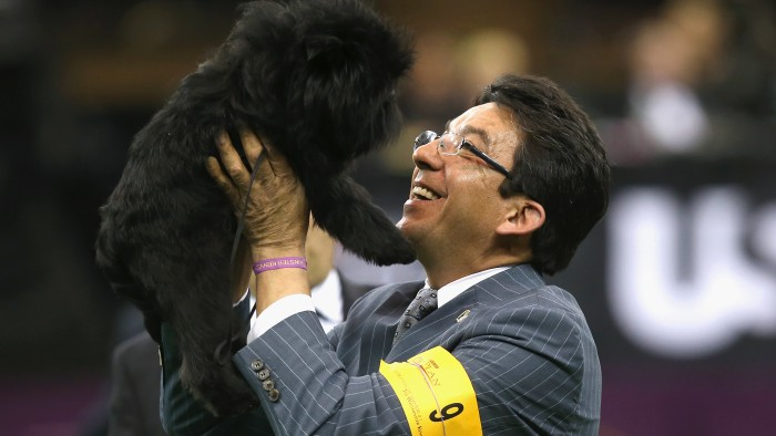 Dog handler Ernesto Lara hoists Banana Joe into the air after the affenpincher won Best in Show at last year's Westminster Kennel Club Dog Show.