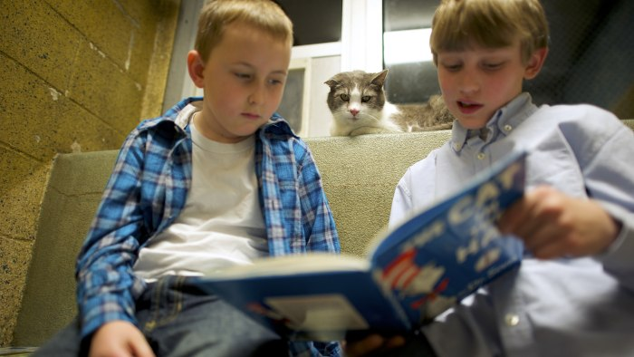 Samuel Trego and Ben Spiri (right) read to Stewart the cat.