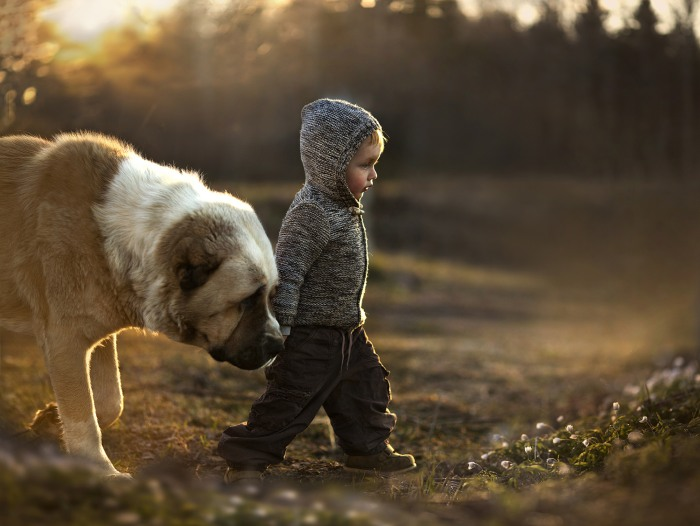 Shumilova's son, Vanya, walks with one of the family's dogs.