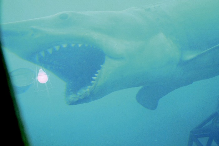 IMAGE: Jaws