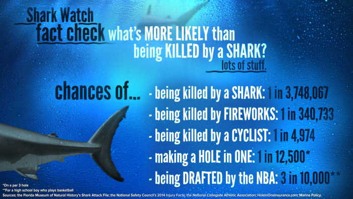 Image: Shark Watch fact check